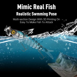 Amazing Fishing Lures